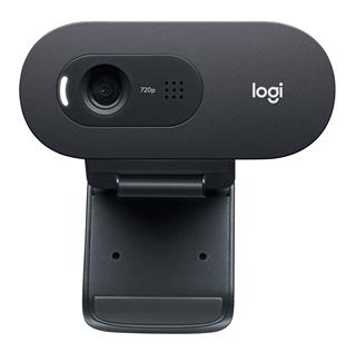 Webcam Logitech Webcam C505e Hd