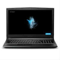 Portatil Gaming Medion 30025320 P6605 I5- 8300H . . .